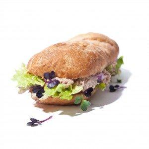 Thunfisch Sandwich